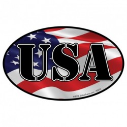 USA Flag 2 Pack Oval Sticker