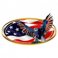 "USA Oval ""Eagle Wings"" Decal"
